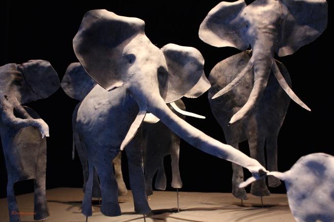 DestelWood Elephant 2017 details
